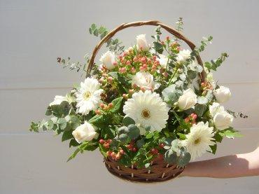 Florería Magnolia La Serena Chile